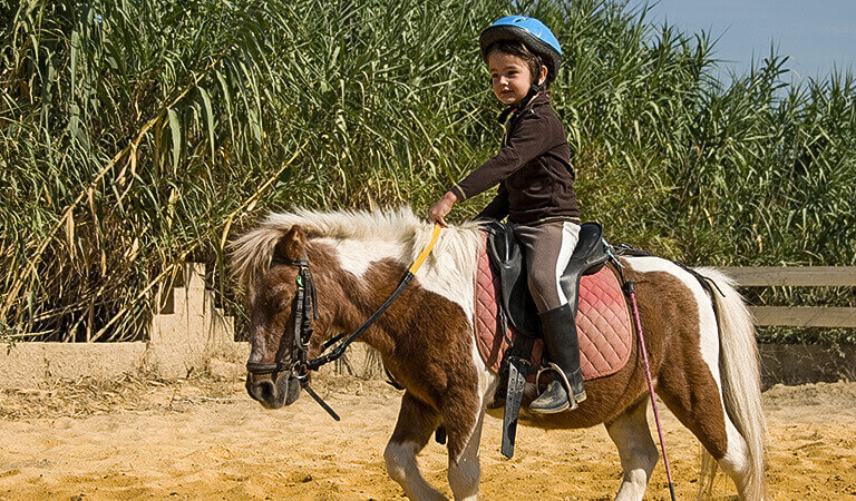 Tiny Trotters Horse Back Riding In Los Osos - California